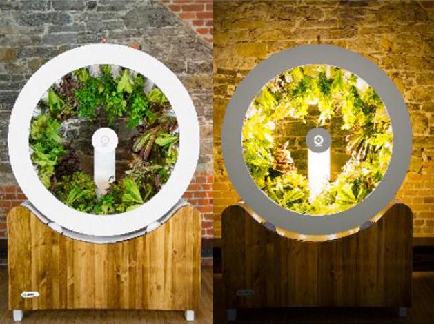 O Garden Hydroponic Design