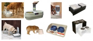 pet feeder research, feeders for pets