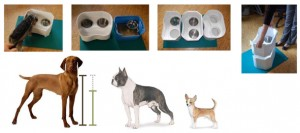 Pet feeder, testing. prototype testing, industrial design testing