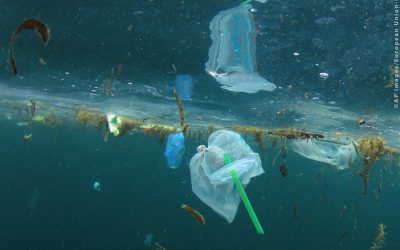 The European Union Just Voted To Ban Single-Use Plastics By 2021