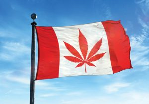 New product Development, new cannabis products, legalization Canada